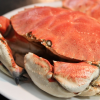 Thumbnail image for Live Crab Preparation